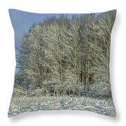 Snowy Landscape #f3 Throw Pillow
