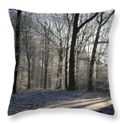 Mystical Winter Landscape Throw Pillow