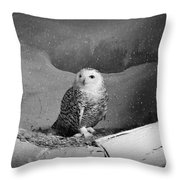 Snowy Owl Throw Pillow