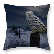 Snowy Owl On A Winter Night Throw Pillow