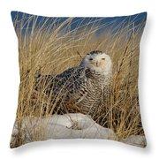 Snowy Owls On The Beach Throw Pillow