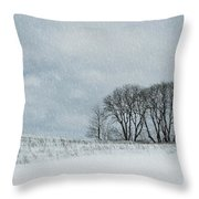 Snowy Pasture Throw Pillow