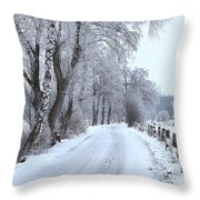 Snowy Path Throw Pillow