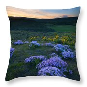 Snowy Phlox Sunset Throw Pillow