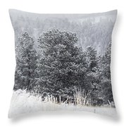 Snowy Pines In The Pike National Forest Throw Pillow