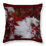 Snowy Red Maple Throw Pillow