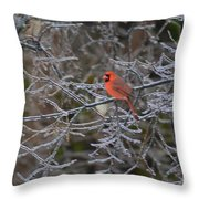 Snowy Red  Throw Pillow