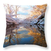 Snowy Refections Throw Pillow