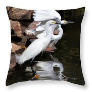 Snowy Reflections Throw Pillow