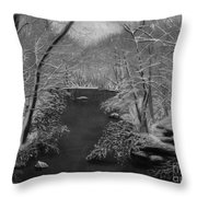 Snowy River Throw Pillow