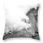 Snowy Shore Throw Pillow by Nicole Parks