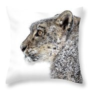 Snowy Snow Leopard Throw Pillow