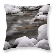 Snowy Stickney Brook Throw Pillow