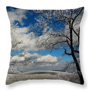 Snowy Sunday Throw Pillow