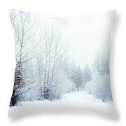 Snowy Sunday Throw Pillow