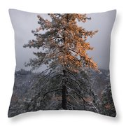 Snowy Sunset Throw Pillow