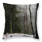 Snowy Trail Quantico National Cemetery Throw Pillow