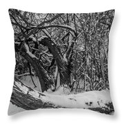 Snowy Tree Bench In Black And White Throw Pillow