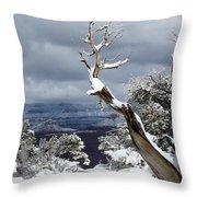 Snowy View Throw Pillow