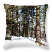Snowy Wilderness Throw Pillow