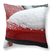 Snowy Wing Mirror Throw Pillow