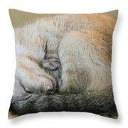 Snugglepuss Throw Pillow