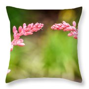 So Close And Yet So Far Throw Pillow
