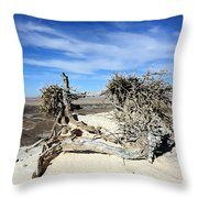 So Dry Throw Pillow
