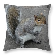 So.... Got Nuts? Throw Pillow