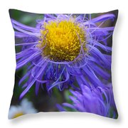 So... Purple  Throw Pillow