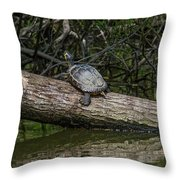 Soaking Up The Rays Throw Pillow