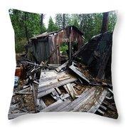 Soap Creek Debris, Real Estate Series Throw Pillow