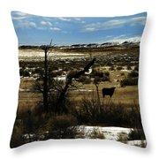 Soaring In Montana Throw Pillow