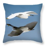 Soaring Over Still Waters Throw Pillow