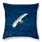 Soaring Snowy Egret  Throw Pillow