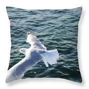 Soaring Waters Throw Pillow