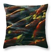 Sockeye Salmon Swim Upstream To Spawn Throw Pillow