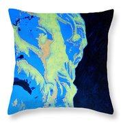 Socrates - Ancient Greek Philosopher Throw Pillow