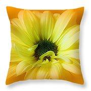 Sodden Petals   Throw Pillow