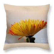 Soft And Complexed Throw Pillow