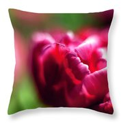 Soft And Feathery Throw Pillow