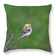 Soft And Fluffy Throw Pillow
