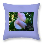 Soft And Gentle Rose Of Sharon Throw Pillow
