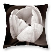 Soft And Sepia Tulip Throw Pillow