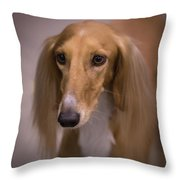 Soft And Silky Throw Pillow