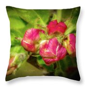 Soft And Soothing 2 Throw Pillow