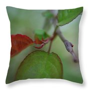 Soft Branch Throw Pillow