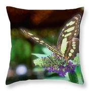 Soft Butterfly Throw Pillow