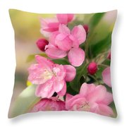 Soft Apple Blossom Throw Pillow