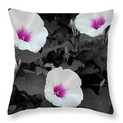 Soft Contrast Throw Pillow